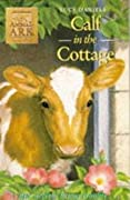 Calf in the Cottage
