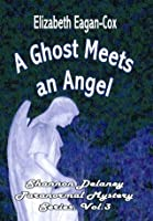 Ghost Meets an Angel [Shannon Delaney Paranormal Mystery Series, Vol. 3]