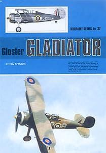 Gloster Gladiator (Warpaint Series, #37)