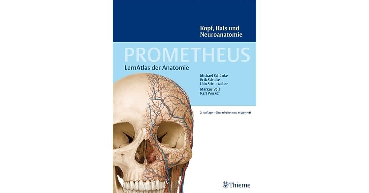 Erfreut Anatomie Kopf Und Hals Ppt Zeitgenössisch - Anatomie und ...