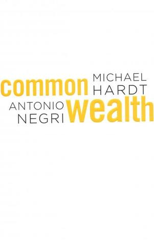 Common Wealth by Michael Hardt