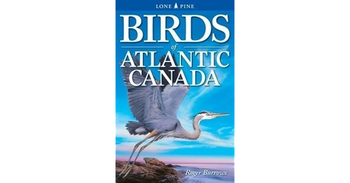 Birds of Atlantic Canada by Roger Burrows