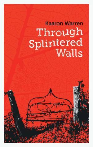 Through Splintered Walls by Kaaron Warren