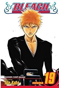 Bleach, Volume 19