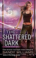 The Shattered Dark (Shadow Reader, #2)