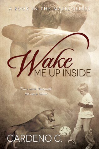 Wake Me Up Inside by Cardeno C.