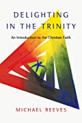 Delighting in the Trinity: An Introduction to the Christian Faith