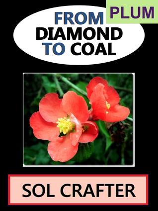 From Diamond to Coal 01 (From Diamond to Coal, #1)