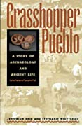 Grasshopper Pueblo: A Story of Archaeology and Ancient Life
