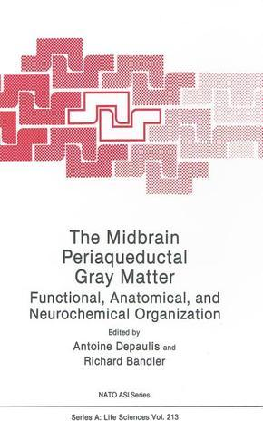 The-Midbrain-Gray-Matter-