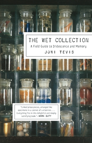 The Wet Collection: A Field Guide to Iridescence and Memory