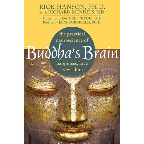 Image result for buddha's brain