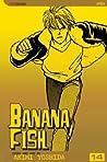 Banana Fish, Vol. 14