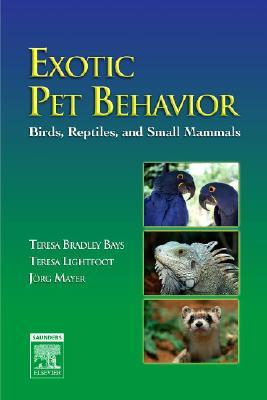 Exotic Pet Behavior: Birds, Reptiles, and Small Mammals
