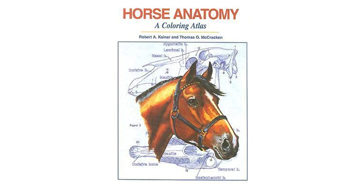 Horse Anatomy: A Coloring Atlas by Robert A. Kainer