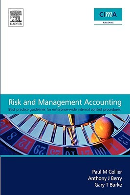 Risk and Management Accounting: Best Practice Guidelines for Enterprise-Wide Internal Control Procedures