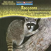 Raccoons Are Night Animals/Los Mapaches Son Animales Nocturnos