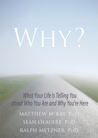 Why What Your Life Is Telling You about Who You Are and Why You're Here