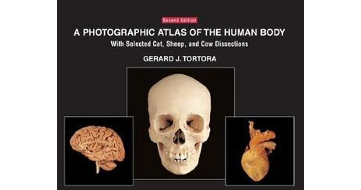 A Photographic Atlas of the Human Body: With Selected Cat, Sheep ...