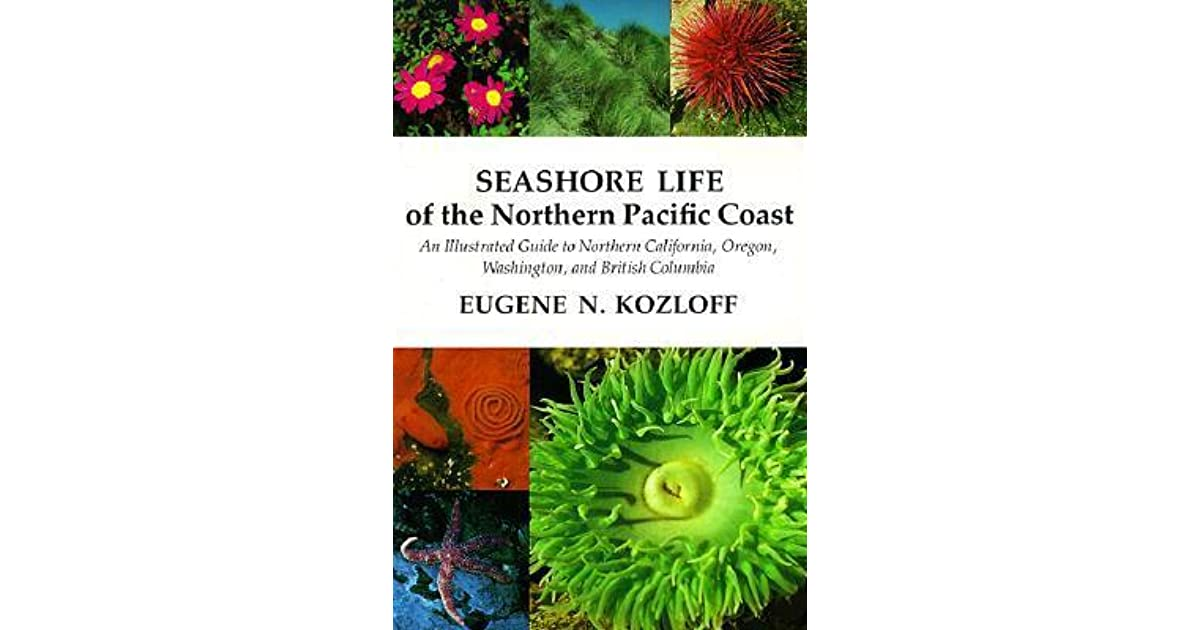 Seashore Life Of The Northern Pacific Coast An