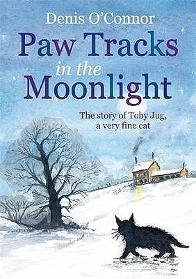 Paw Tracks in the Moonlight