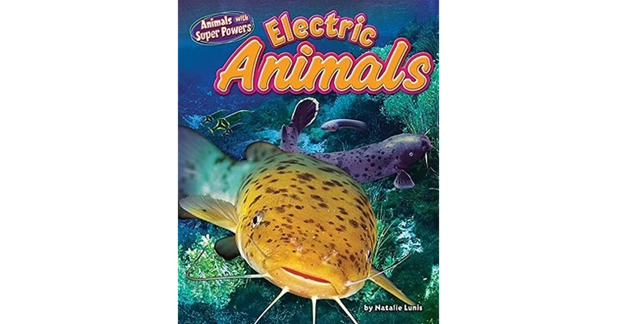 Electric Animals By Natalie Lunis