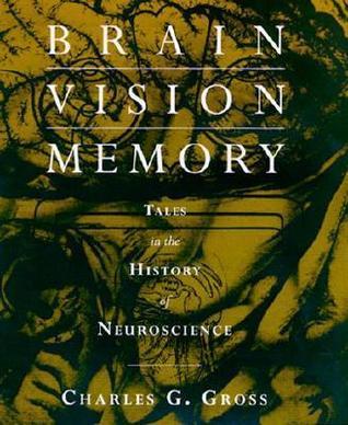 Brain, Vision, Memory  Tales in