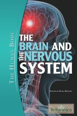 The-Brain-and-the-Nervous-System