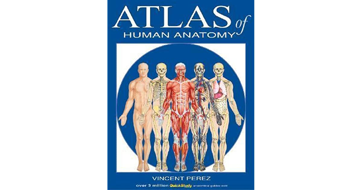 Atlas Of Human Anatomy By Vincent Perez