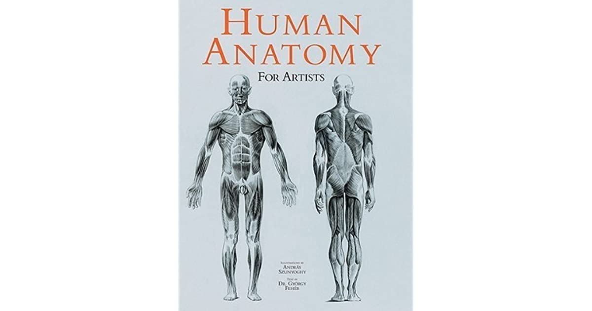 Human Anatomy For Artists By Andrs Szunyoghy