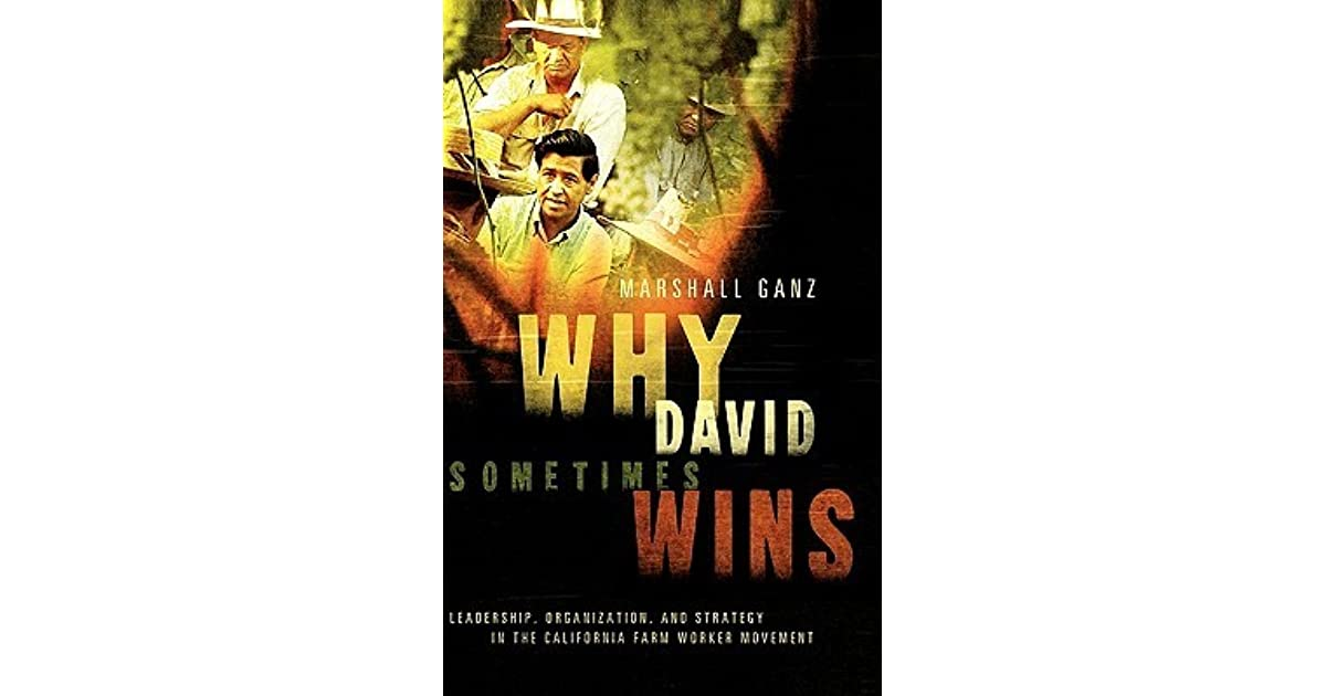Why David Sometimes Wins Leadership Organization And