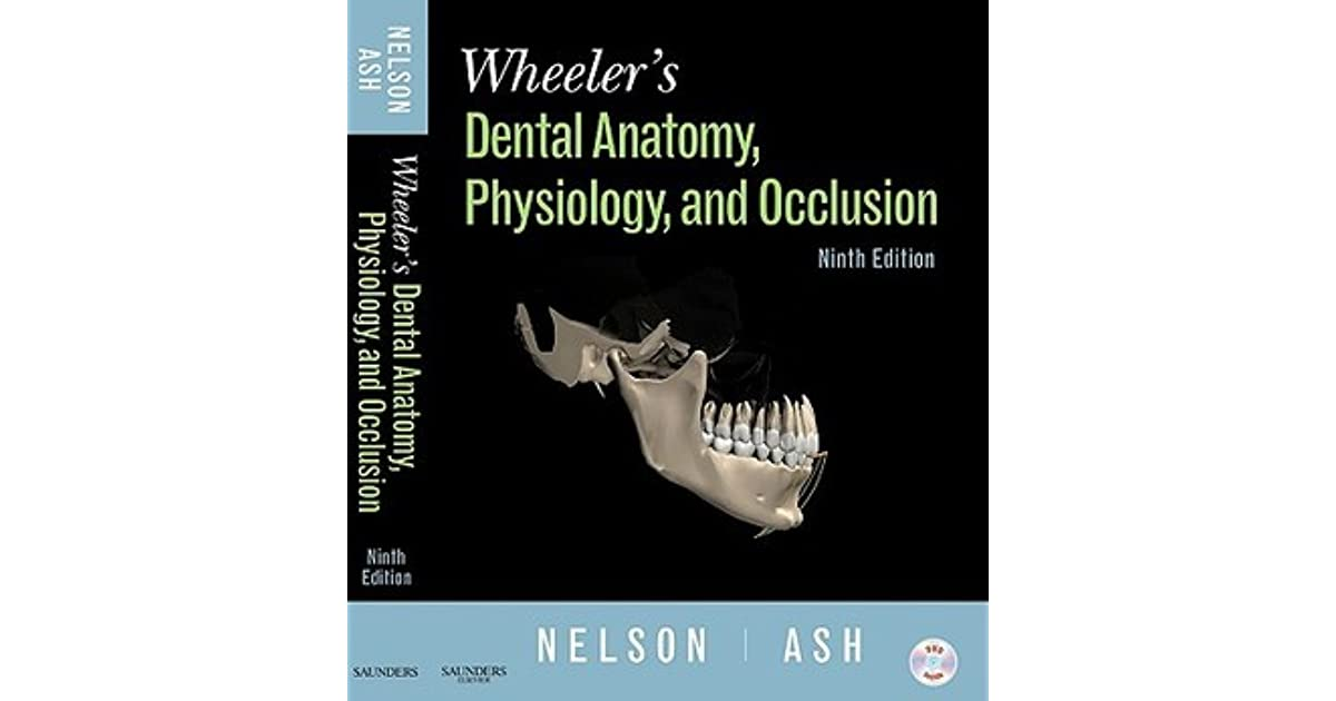 Wheeler\'s Dental Anatomy, Physiology and Occlusion by Stanley J. Nelson