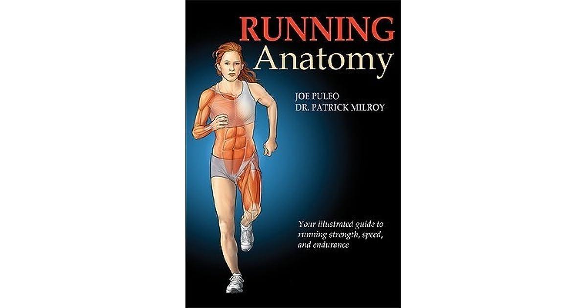 Анатомия бега скачать pdf