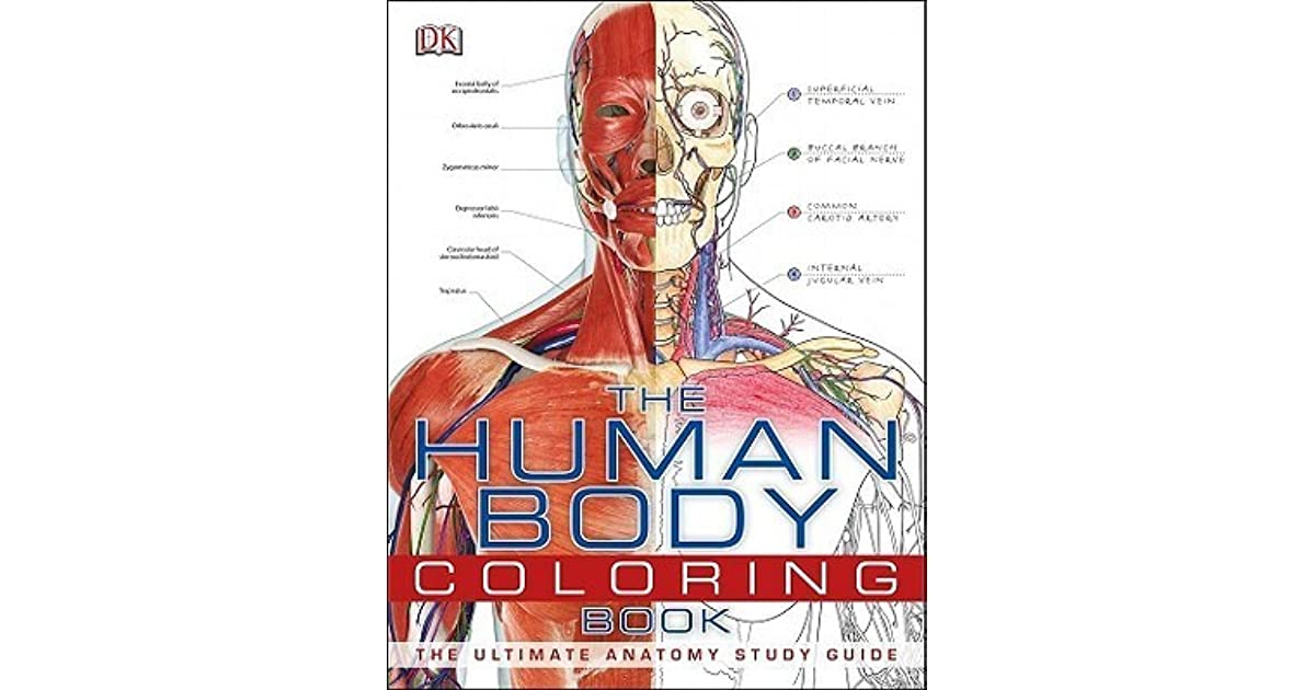 The Human Body Coloring Book The Ultimate Anatomy Study Guide By Dk