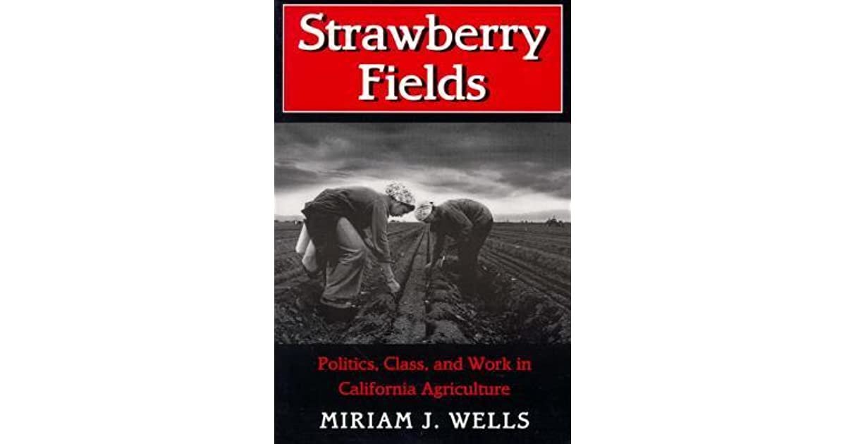 Strawberry fields by miriam j wells fandeluxe Choice Image