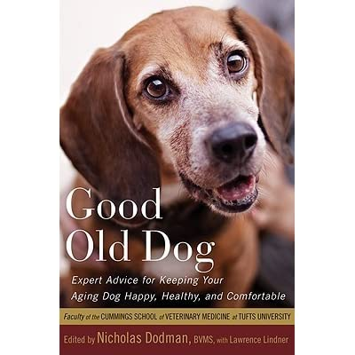 Good Old Dog: Expert Advice for Keeping Your Aging Dog Happy ...