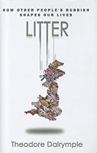 Litter: How Other People's Rubbish Shapes Our Lives
