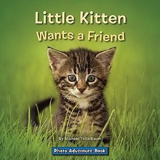 Little Kitten Wants a Friend