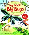 The Usborne Big Book of Big Bugs: And a Few Little Ones Too...