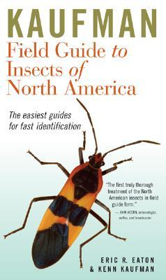 book cover for Kaufman's Field Guide to Insects of North America