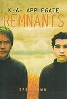 Breakdown (Remnants, #6)