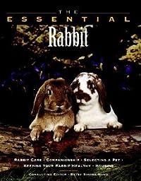 The Essential Rabbit