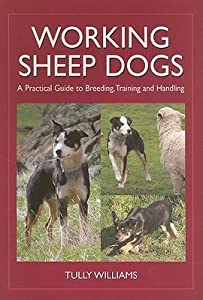 Working Sheep Dogs: A Practical Guide to Breeding, Training and Handling