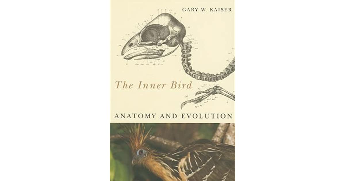 The Inner Bird: Anatomy and Evolution by Gary W. Kaiser