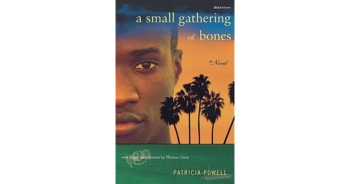 A Small Gathering of Bones by Patricia Powell b11939754d7