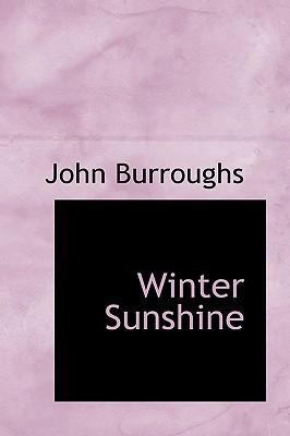 Winter Sunshine