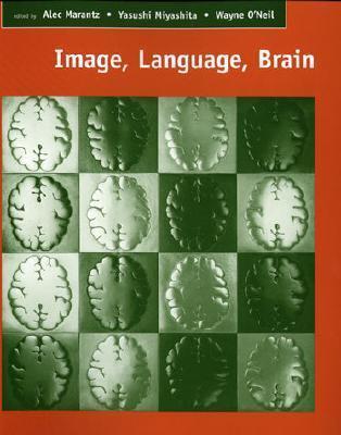 image language brain
