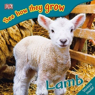 Lamb-See-How-They-Grow-