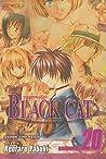 Black Cat, Volume 20