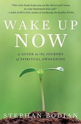 Wake-Up-Now-A-Guide-to-the-Journey-of-Spiritual-Awakening
